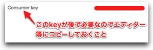 Consumer-key.jpg