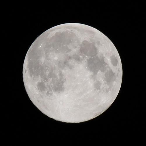 満月 - デジイチで満月を撮影