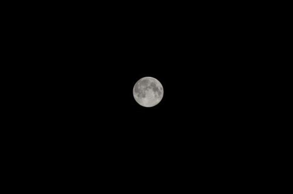 そんなに大きく撮れていない月 - デジイチで満月を撮影
