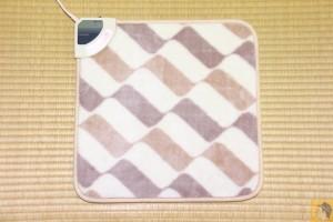 small-electric-carpet-4.JPG
