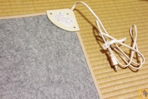 small-electric-carpet-8.JPG