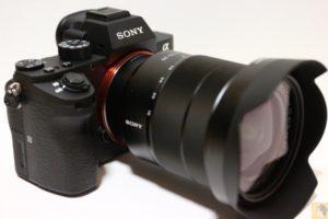 全体その2 - 初めてのフルサイズ一眼レフ『Sony α7RⅡ(ILCE-7RM2)』を購入!